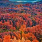 Dawn Colors at Fairyland