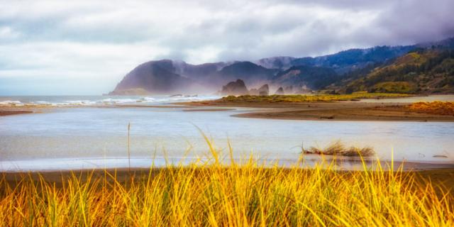 Foggy Morning Near Gold Beach - Oregon's Pacific coast