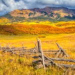 A zig-zag fence leads the eye up to a forest of brilliant scrub oaks that grow on a rise that partly conceals a yellow aspen forest in the distance.