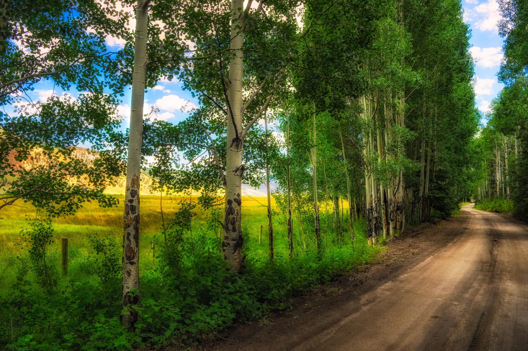 This tranquil view of a country dirt road was taken on Hinsdale County Road 50, northeast of the Cebolla Day Use Area near Lake City, Colorado.