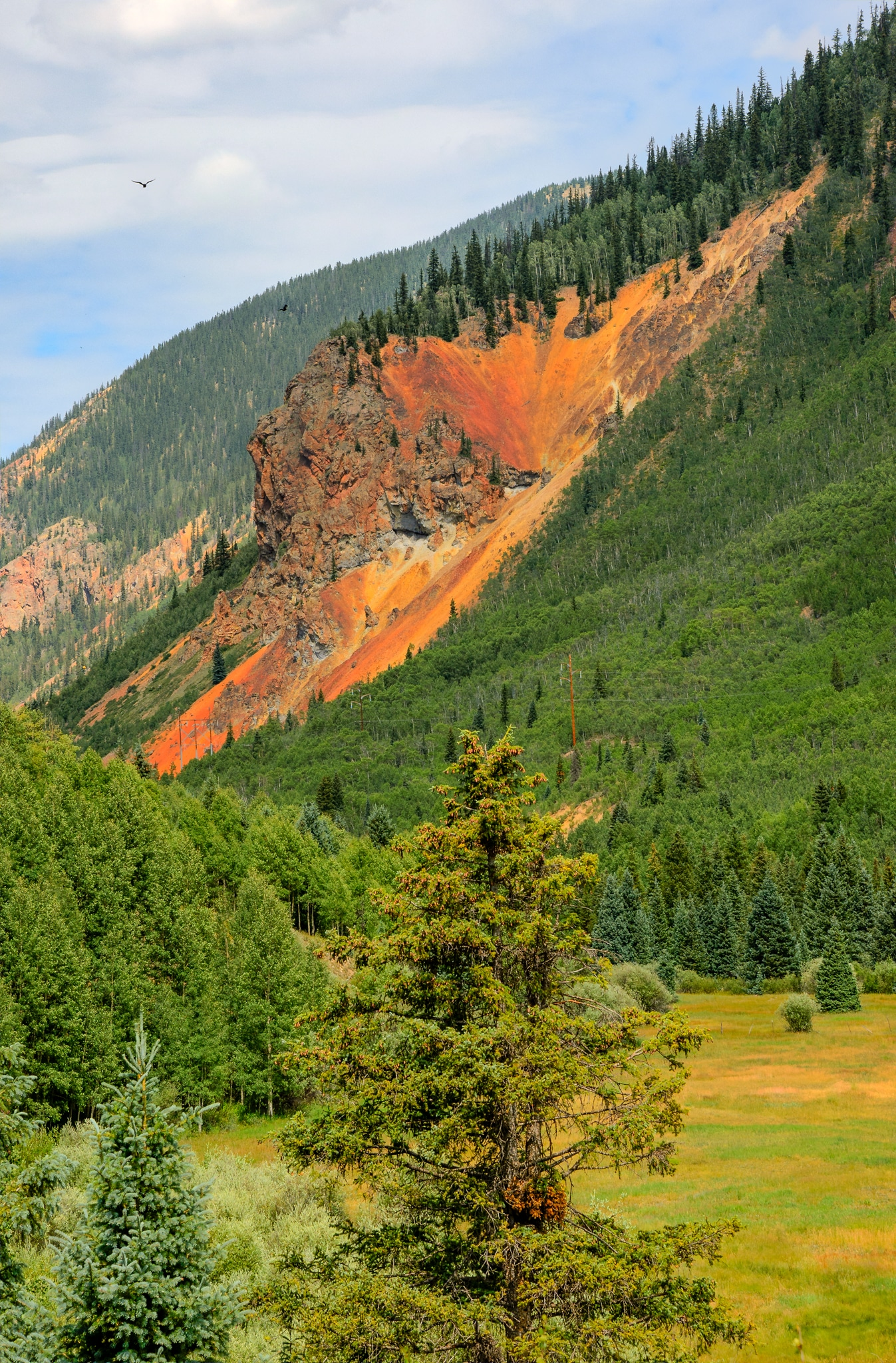 Viewed from US 550 heading north into Silverton, Colorado, this highly oxidized and mineralized volcanic intrusion stands out against the deep green of the surrounding spruce forest. It is on the western slope of Anvil Mountain and is part of the western edge of the Silverton Caldera, which formed over 30 million years ago.
