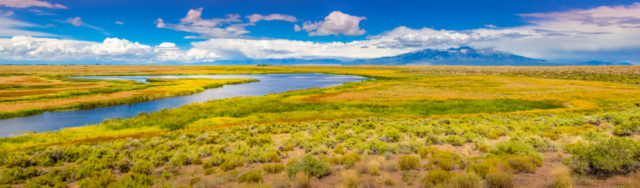 A view of part of the riparian habitat along the Rio Grand River in the Alamosa National Wildlife Refuge in Colorado from Bluff Overlook.