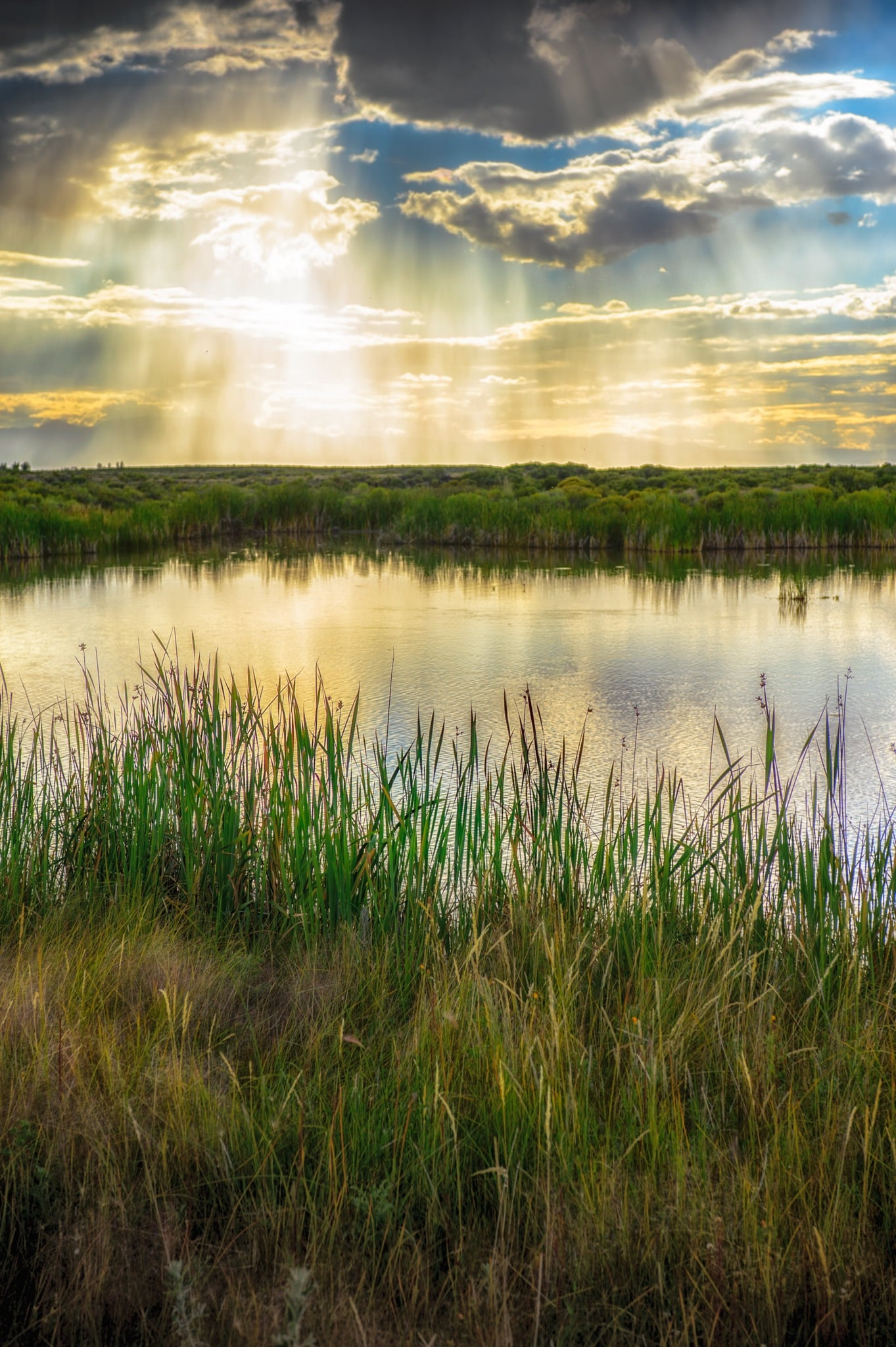 Crepuscular rays illuminate the many ponds located in the Blanca Wildlife Habitat Area in the San Luis Valley near Alamosa, Colorado.