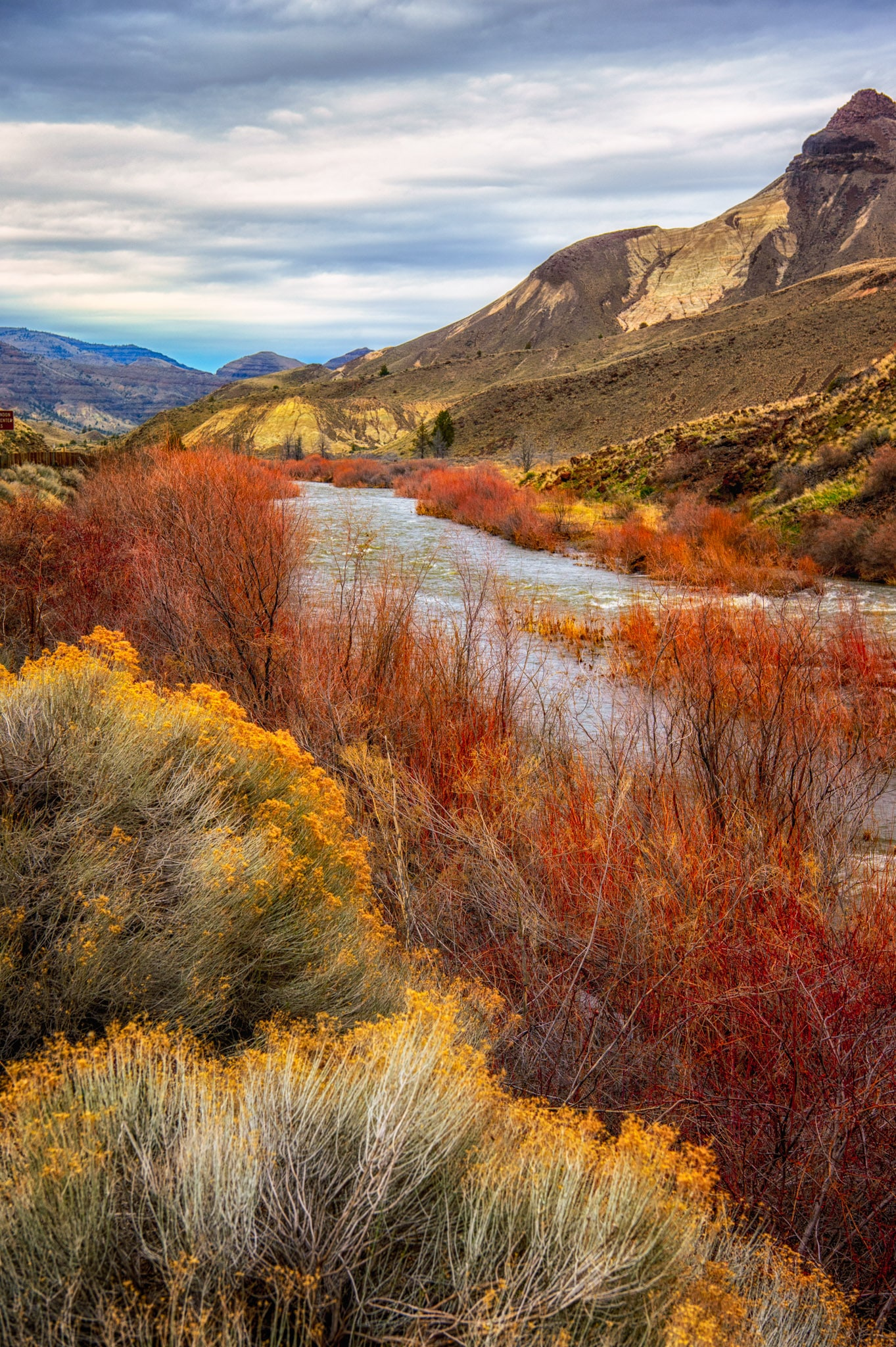 Winter Colors in John Day