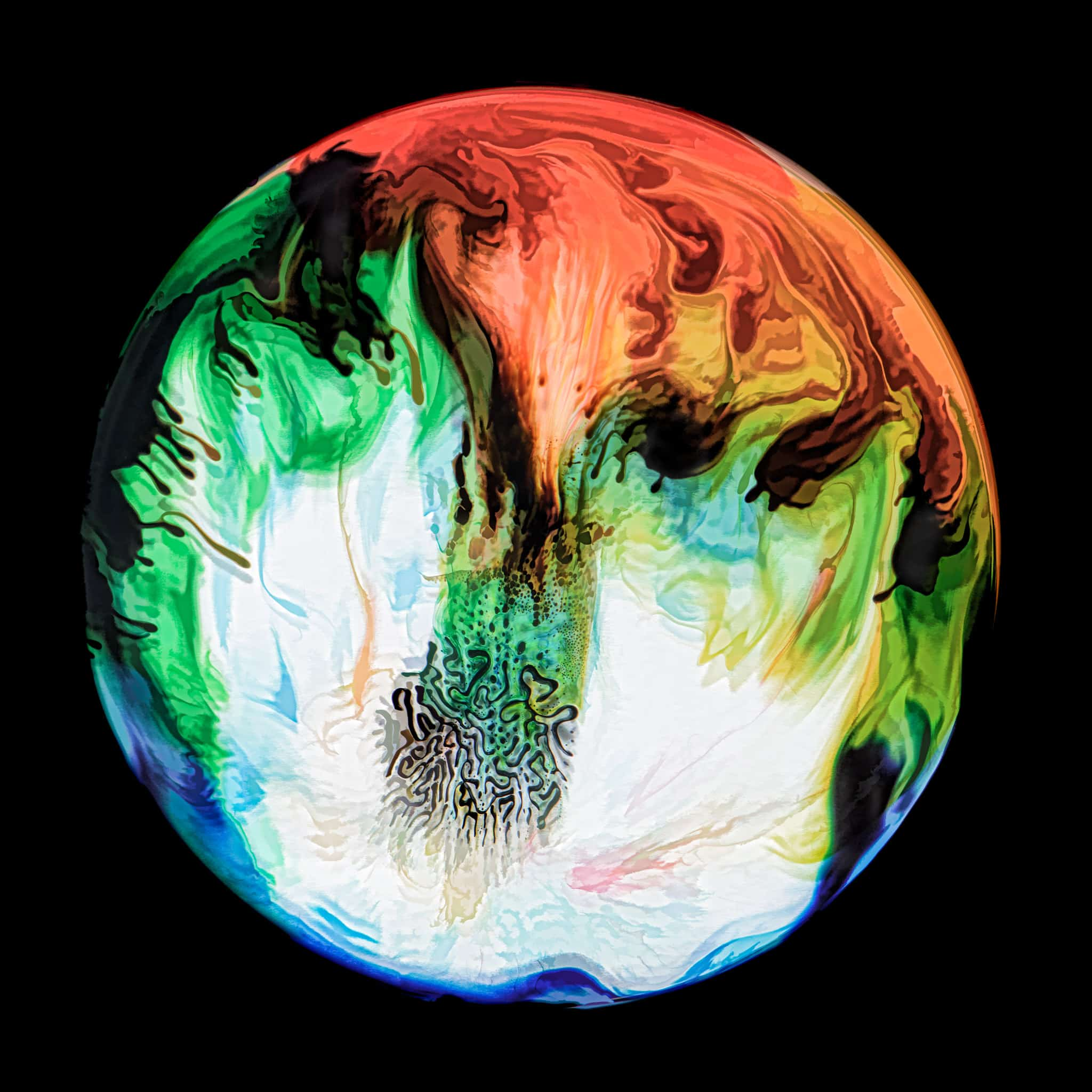 Ferro-magnetic fluid in a petrie dish with milk, food coloring, acrylic paint, and glycerine. - Ferrofluid abstract photographs
