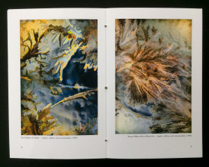Photographic chapbook page-spread