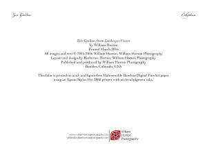 ZenGarden - Photographic Folio