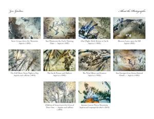 ZenvGarden - Photographic Folio