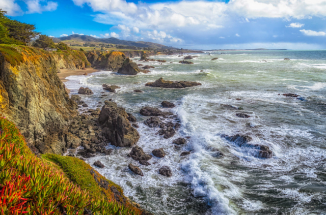 The surf rolls in on a lazy afternoon at Sonoma Coast Beach in California.
