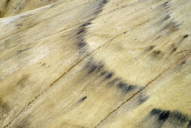 The Painted Hills Detail