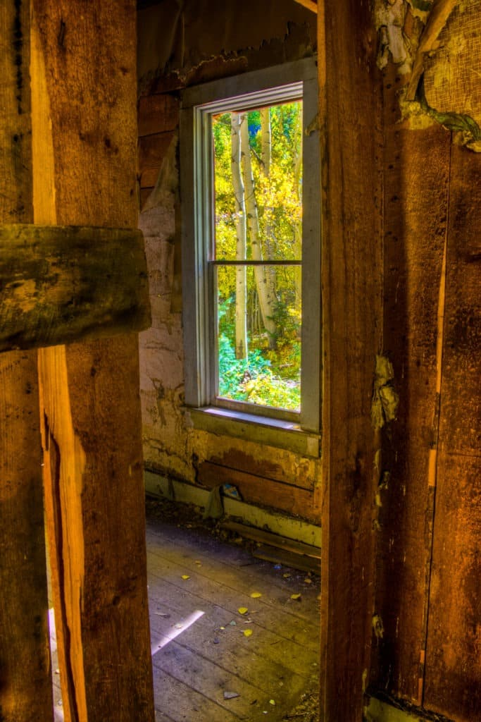 Sunlit aspens are visible through a window in an old house located at the Ironton Town Site, off Highway 550 between Ouray and Silverton, Colorado.
