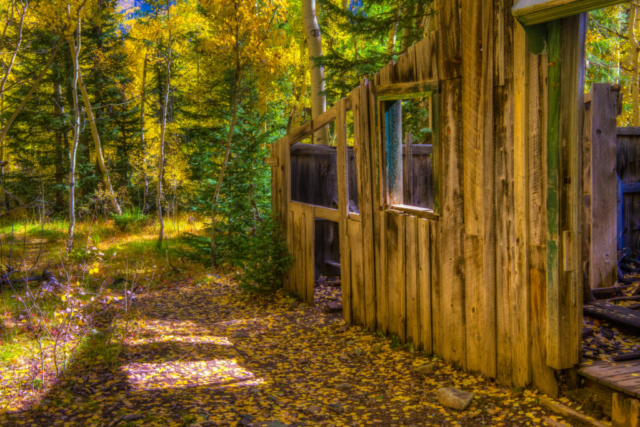 Sun shines through a window in an Ironton Townsite ruin to illuminate golden aspen leaves that have fallen to the ground.
