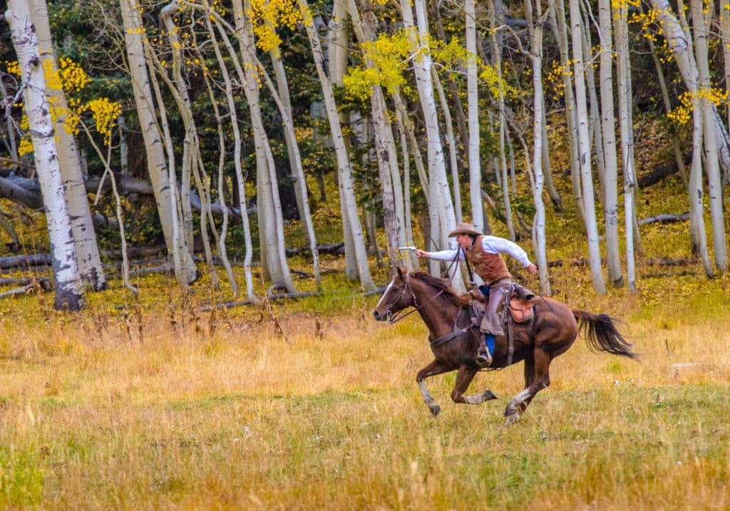 Here a reenacter is practicing for the famous scene from the Jon Wayne version of True Grit in Katie's Meadow along Owl Creek Pass Road between Ridgway and Cimarron, Colorado.