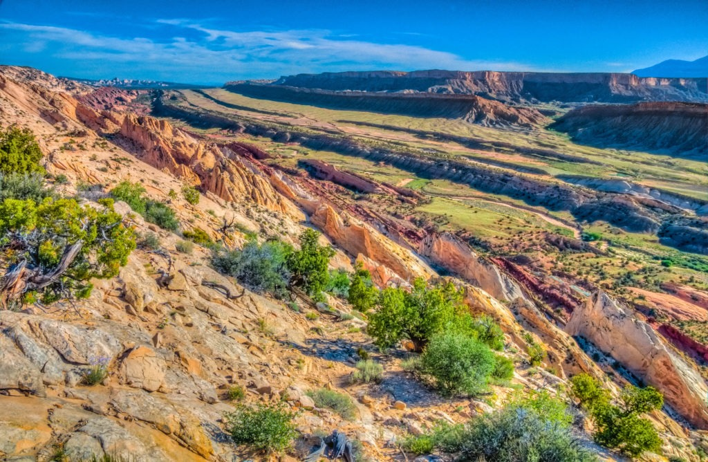 Looking north from Strike Valley Overlook in Capitol Reef National Park.
