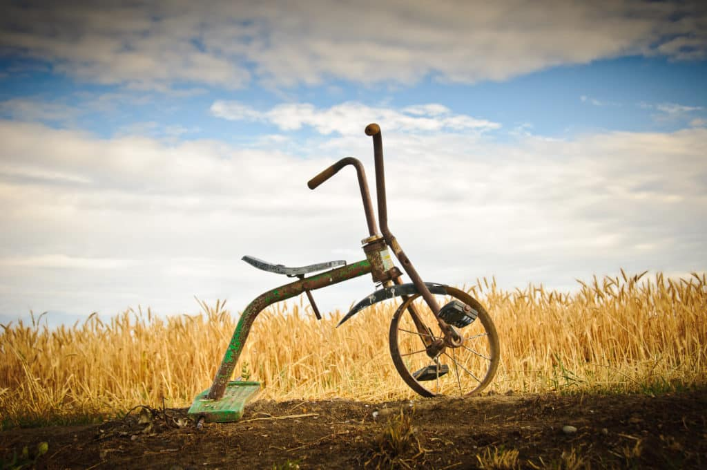 This tricycle and equally aged bicycles marked the boundary between a wheat field and campground in Hardin, Montana. The wheat was ripe. A few days later it was harvested and the remains baled as hay. Montana Summer Landscapes