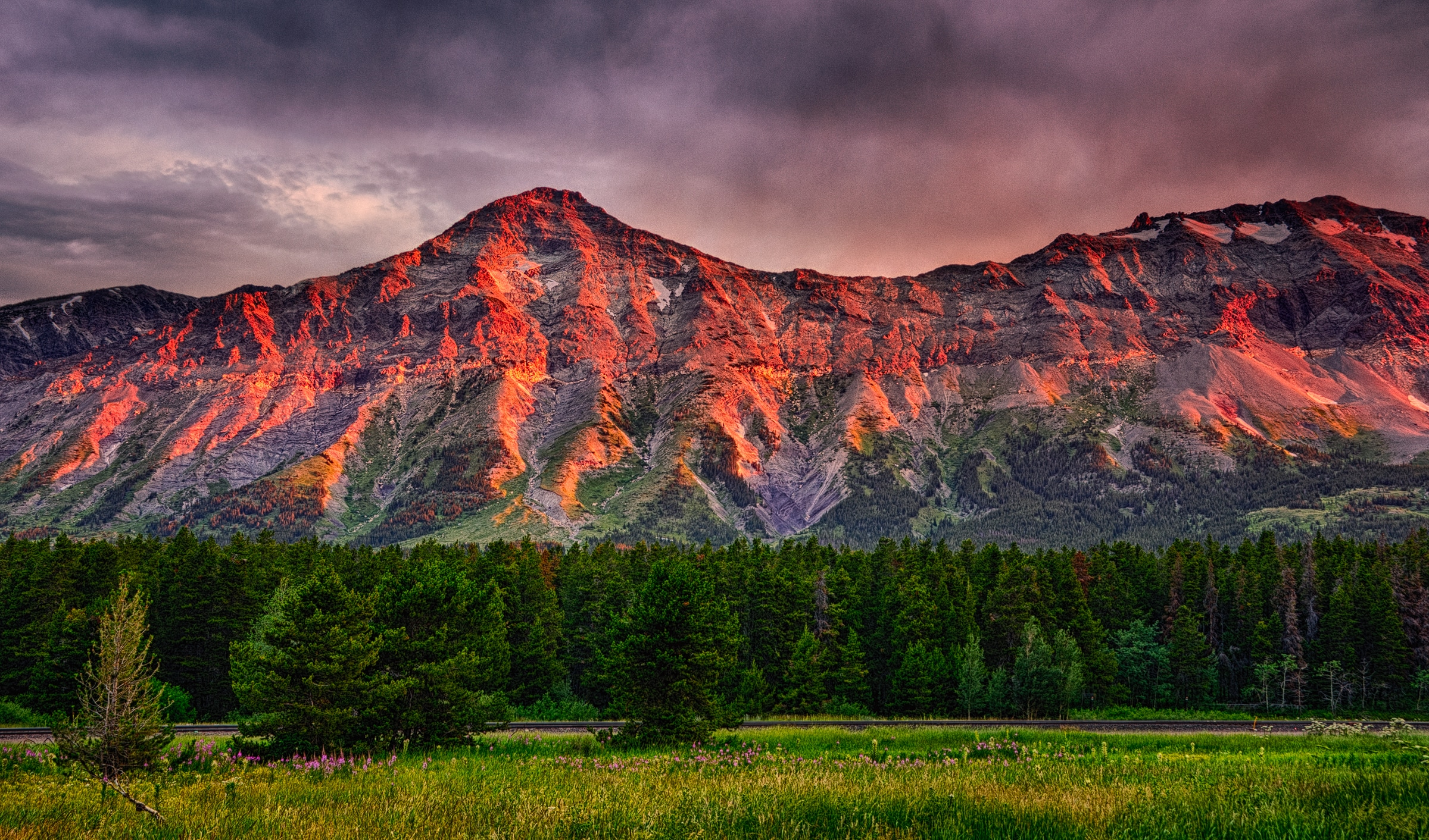 Sunrise along US Route 2 southwest of East Glacier, Montana. Notice the fireweed in the foreground. Montana Summer Landscapes