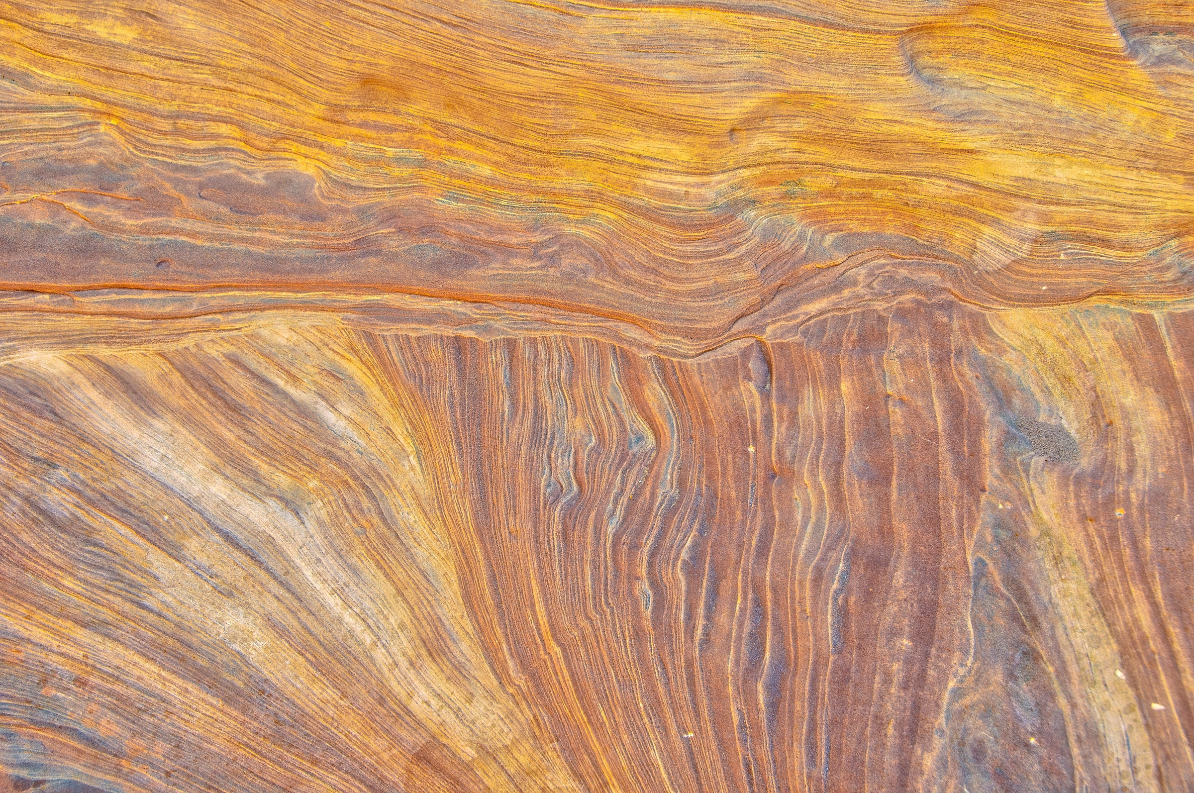 This detail of the wall of Bell Canyon off Wild Horse Road, near Goblin Valley State Park, Utah, looks like wood grain.