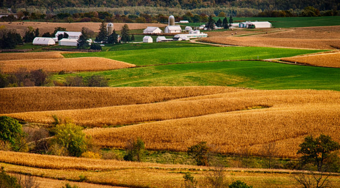 Farms and fields near Balltown, Iowa, just east of the Mississippi River. Part of the Iowa fall landscapes portfolio.