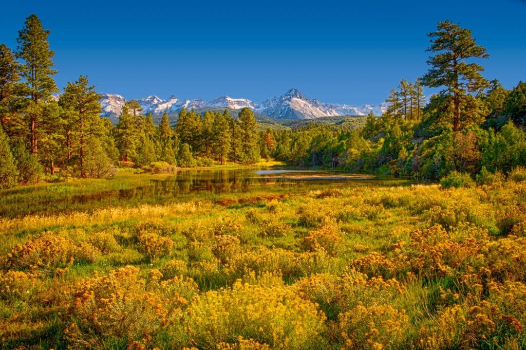 A view of a mountain lake with rabbitbrush in the foreground, looking toward Mt. Sneffels from CR 7 near Ridgeway, Colorado.