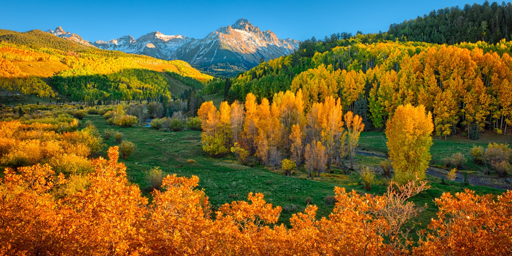 Late afternoon light illuminates Mt. Sneffels and causes the orange Gambel oaks and yellow aspens to glow, as seen from CR 7 near Ridgway, Colorado.