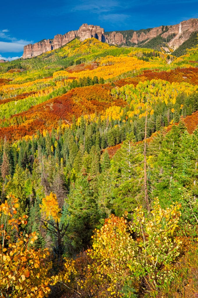 Russet oaks and golden aspens lead the eye up to the Cimarron Mountains as seen from Owl Creek Pass Road near Ridgway, Colorado.