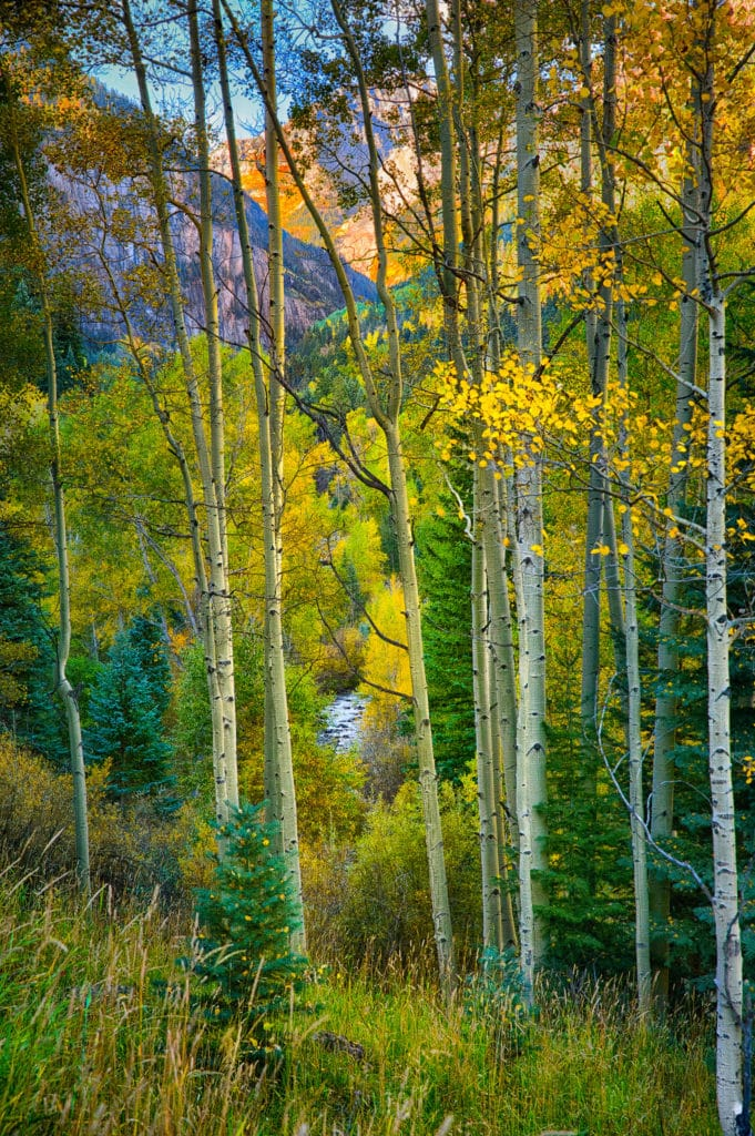 Camp Bird Road takes you to the old Camp Bird mining complex. This route is more famous for its ramshackle mining buildings and summer wild flowers. In the fall, though, colorful aspens, deep green confifers, and a the rushing water of Canyon Creek present photographers with varied and lovely views less than 10 miles from Ouray.