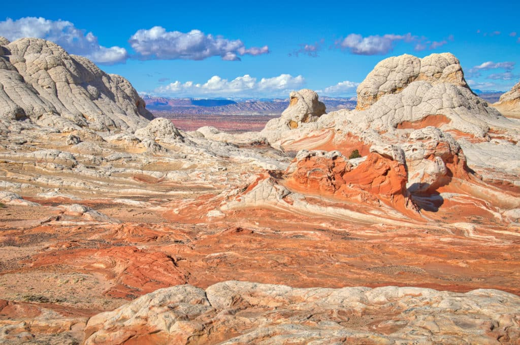 This view looks down into the White Pocket formation with buttes of brain rock in Vermillion Cliffs National Monument.