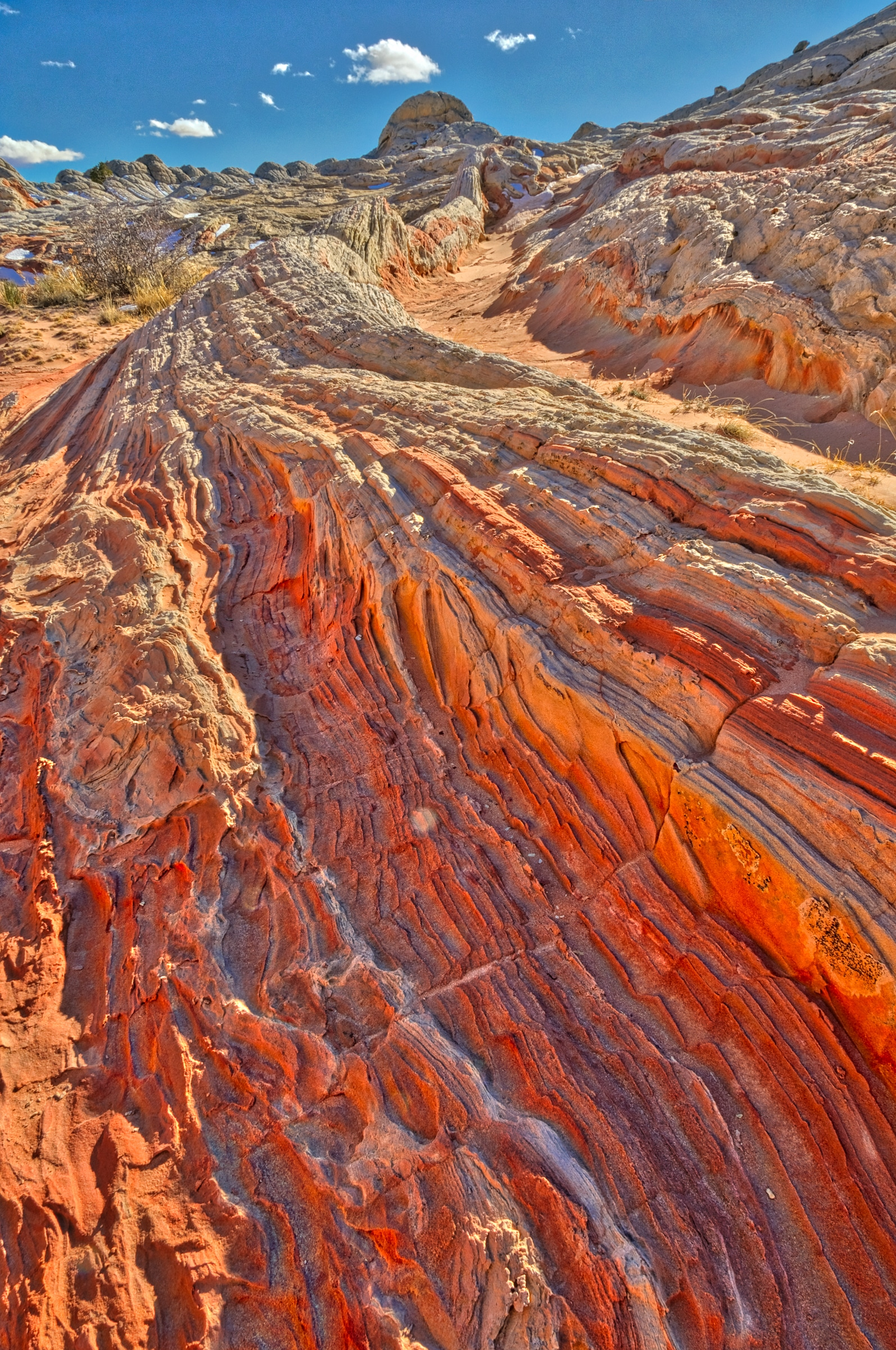 Rock layers on edge in White Pocket in the South Coyote Buttes area of the Vermillion Cliffs National Monument.