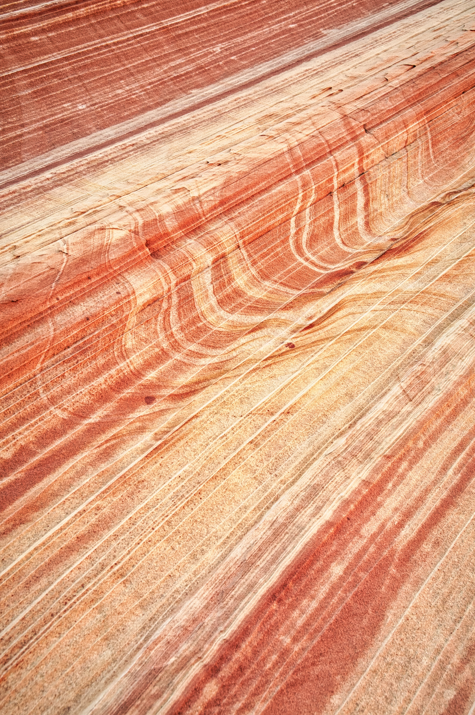 Closeup of Cross-Bedding at the Wave in Vermillion CLiffs National Monument.