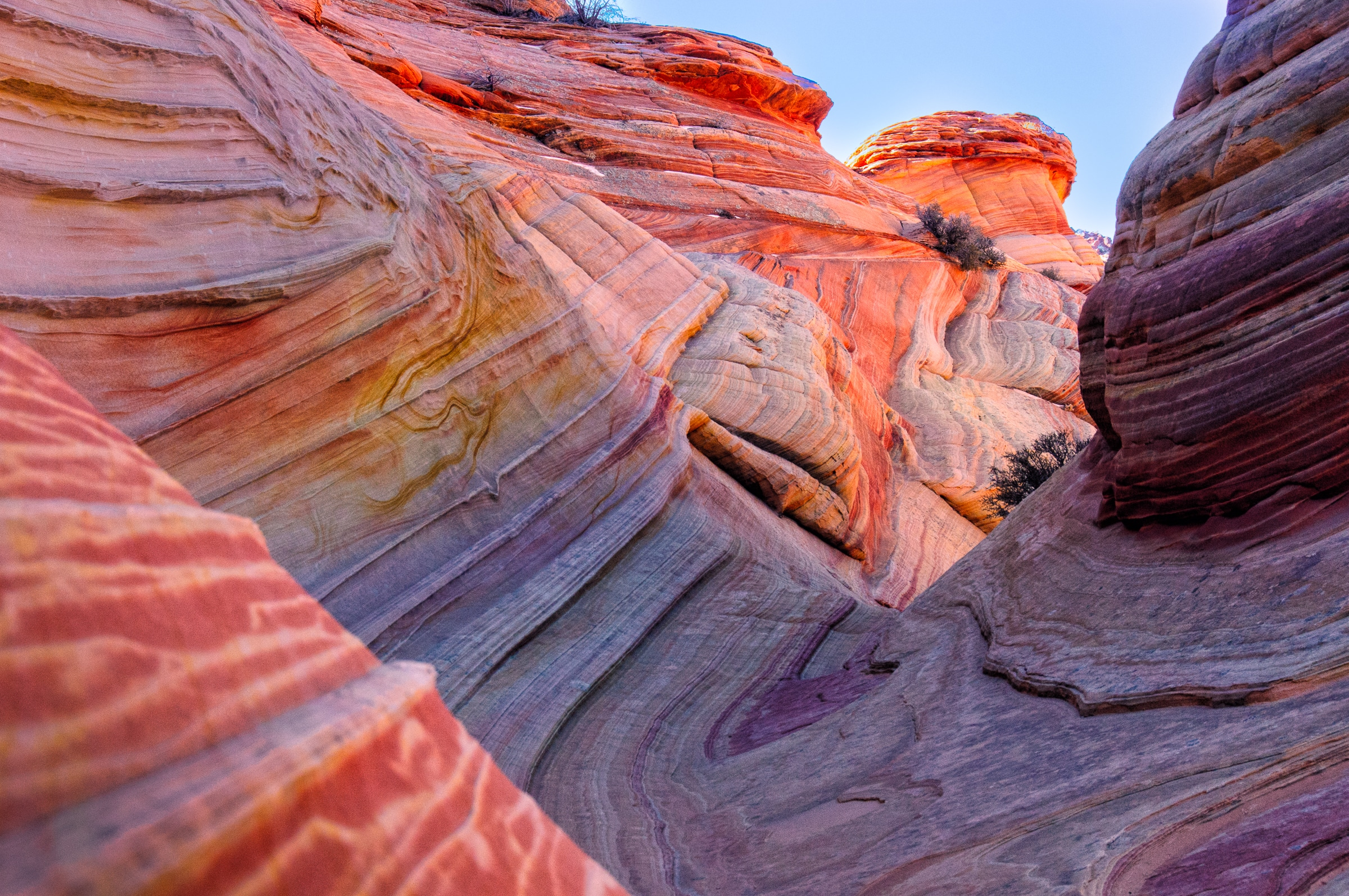 Sandstone strata at The Wave in the North Coyote Buttes area of the Vermillion Cliffs National Monument.