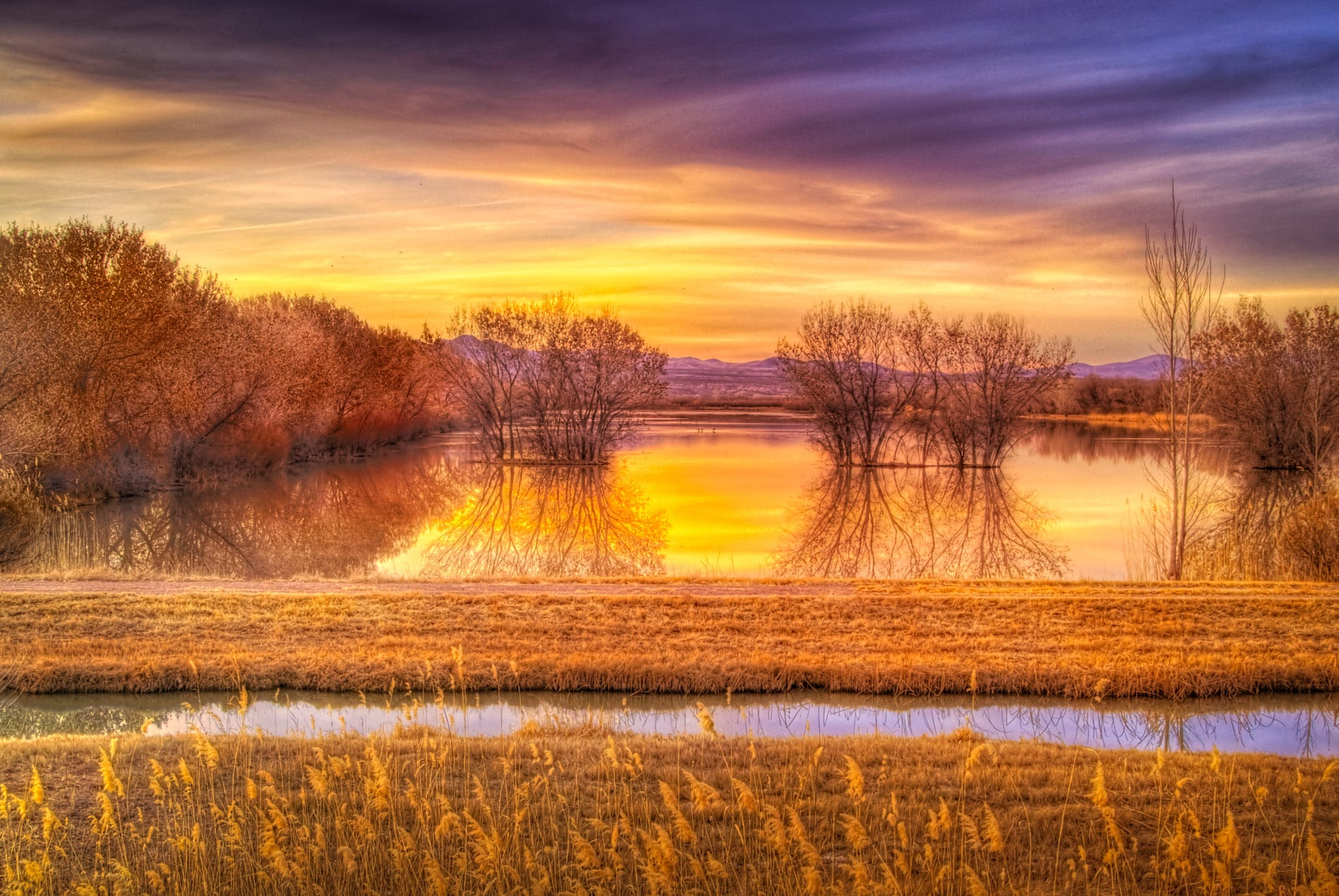 Sunset at one of the ponds of the Bosque del Apache National Wildlife Refuge, near Socorro, New Mexico.