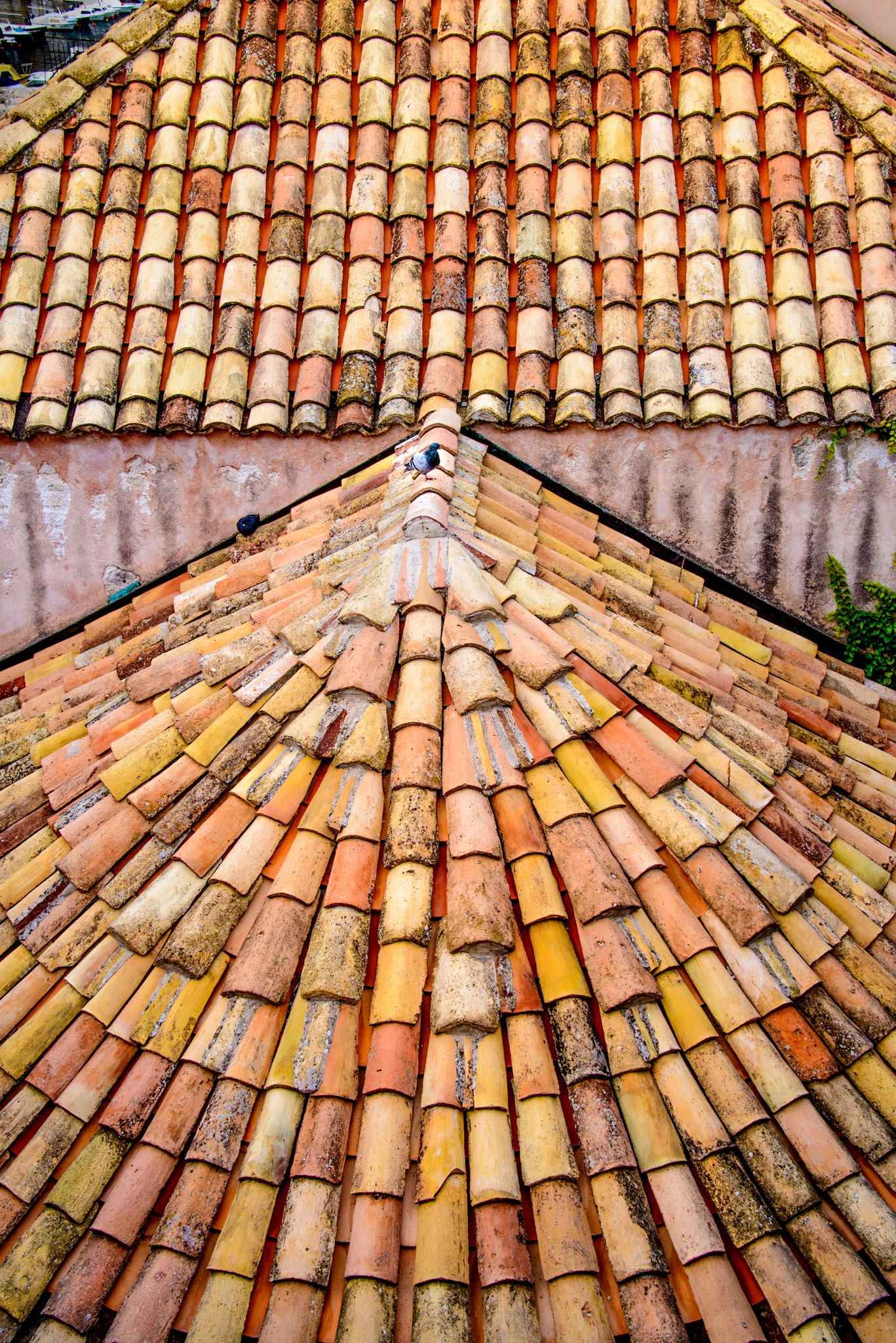 A detail shot of red roof tiles taken from the wall surrounding Dubrovnik Old City in Croatia.