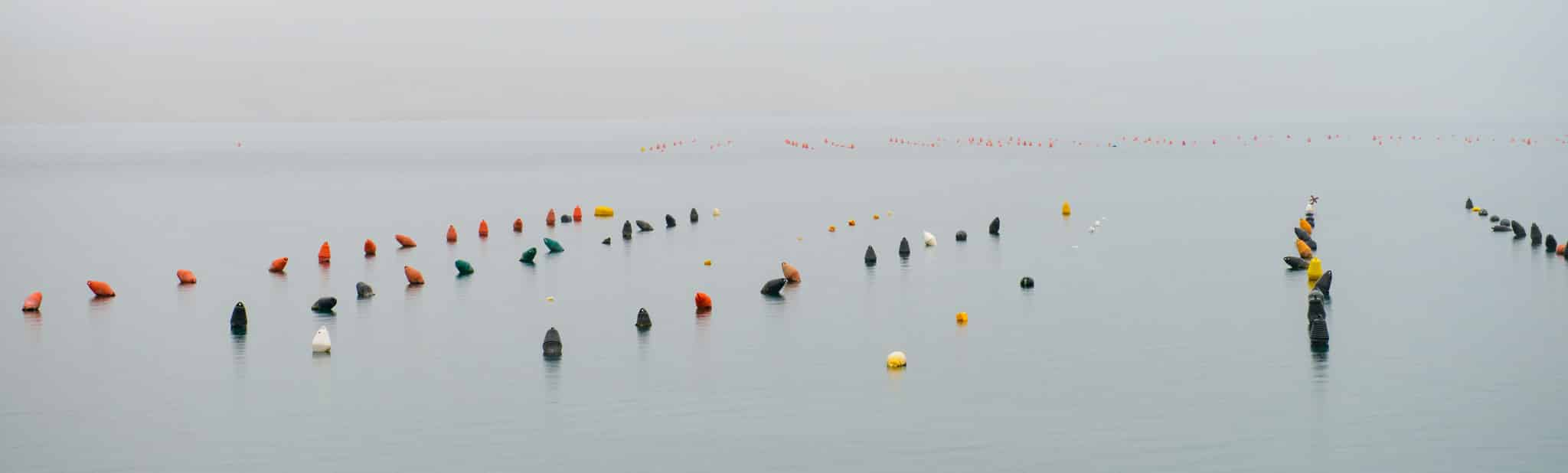Mooring buoys along the coast near Seline in Zadar County, Croatia.