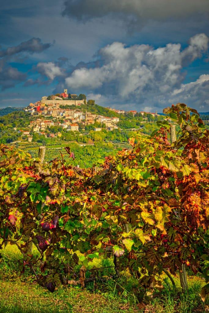 Looking westward toward the hilltop Medieval Istrian village of Motovun, Croatia.