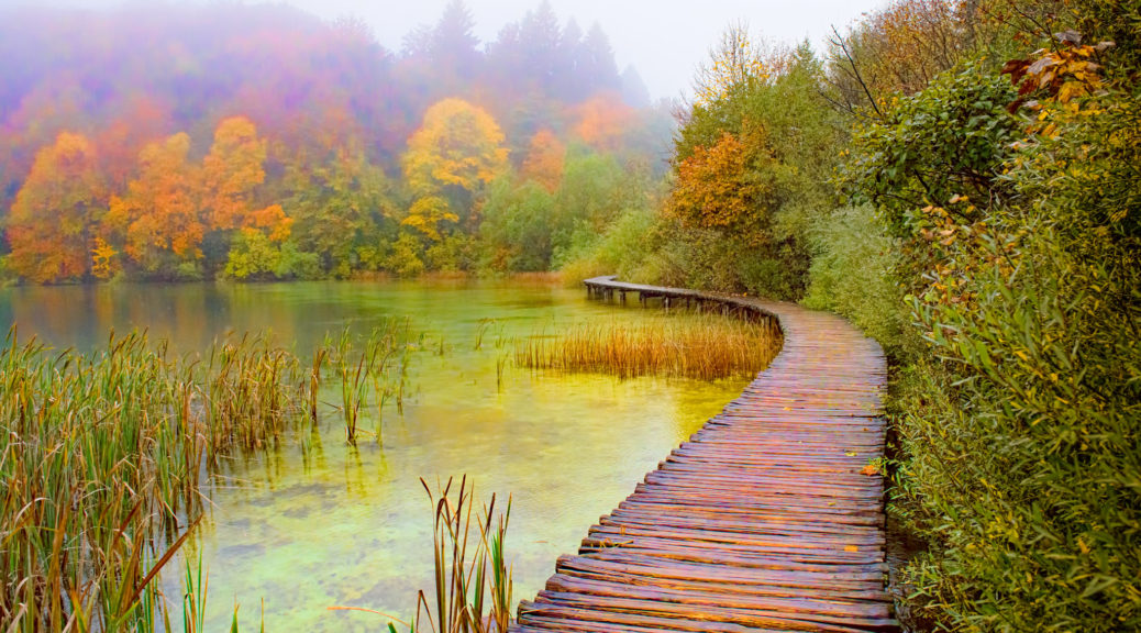 A boardwalk follows the shore of Lake Proscansko in Plitvice Lakes National Park in Croatia. From the Plitvice Lakes National Park photographs album.