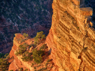 Light warms sandstone towers below Cape Royal on the North Rim of the Grand Canyon. - Grand Canyon North Rim
