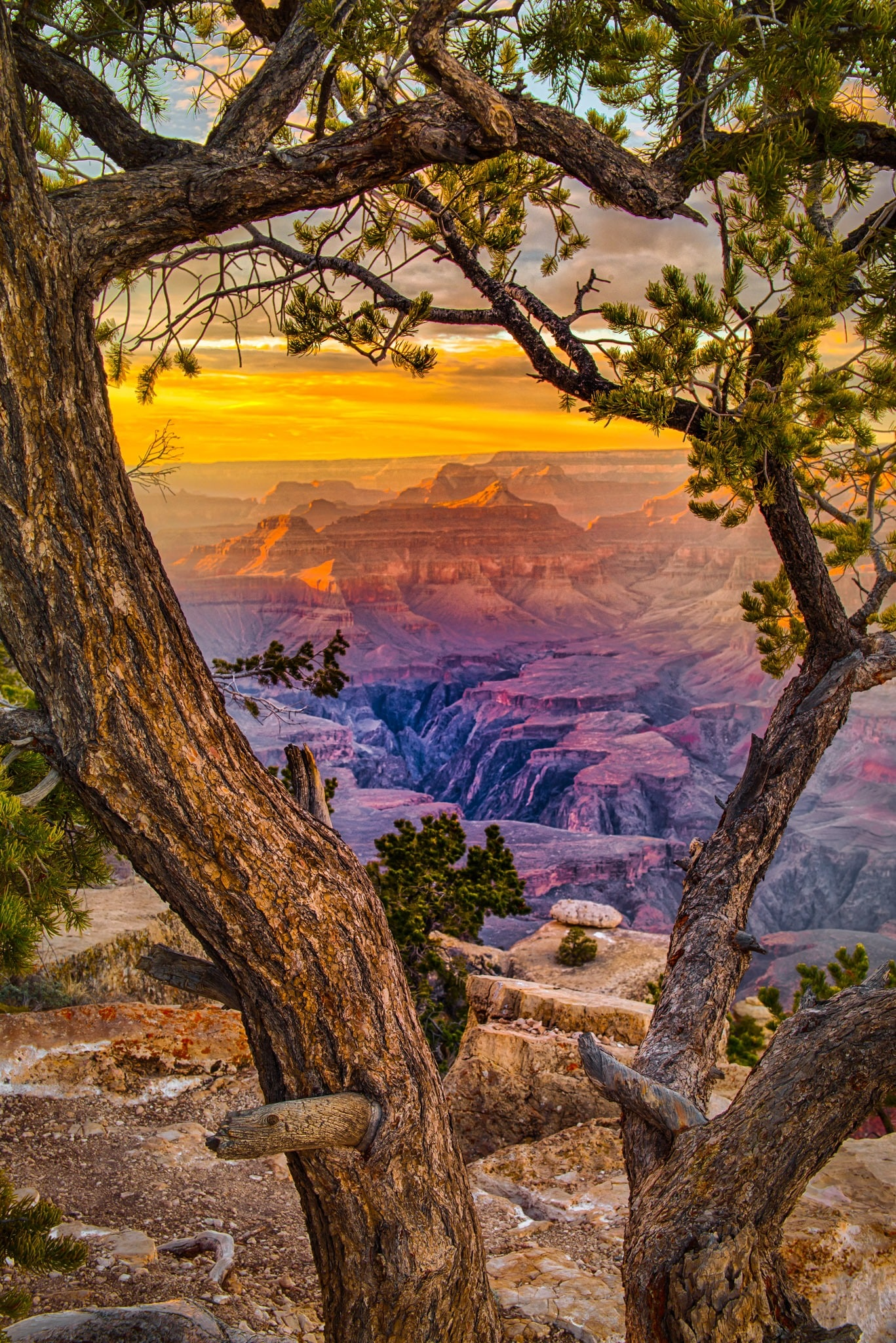 The view from Yaki Point at sunset on the South Rim of the Grand Canyon in Arizona.