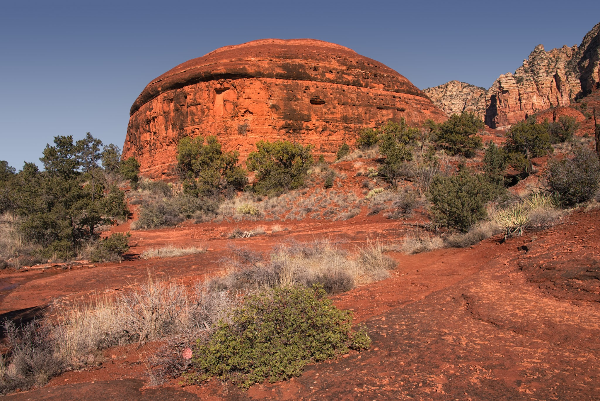 A dome-shaped rock formation seen on the Bell Rock Trail in Sedona, Arizona.
