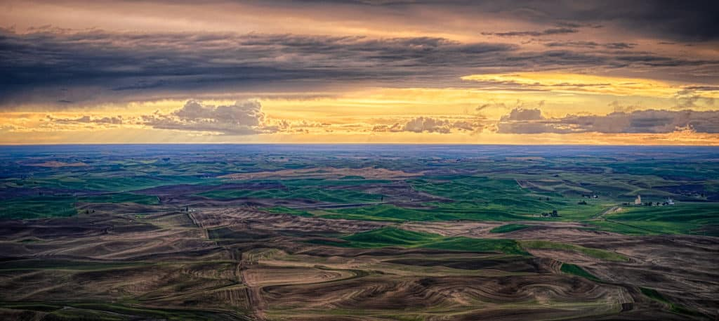 This view of the Palouse hills was taken from Steptoe Butte in Steptoe Butte State Park near Colfax, Washington.