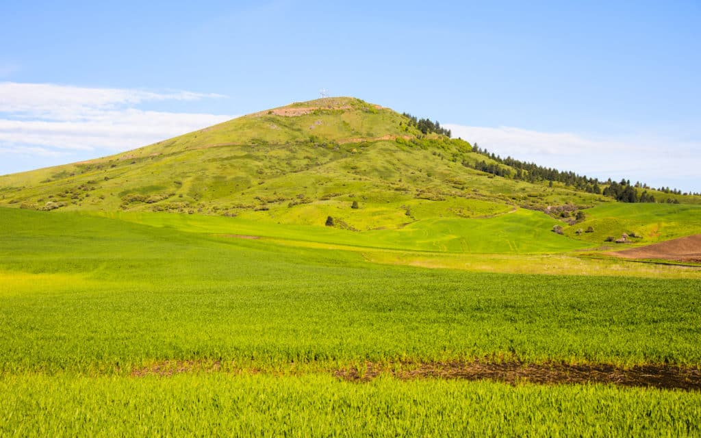 Steptoe Butte, in Steptoe Butte State Park, is a remnant of an earlier landscape that peeks through the rolling loess hills of the Palouse region of eastern Washington near Colfax.