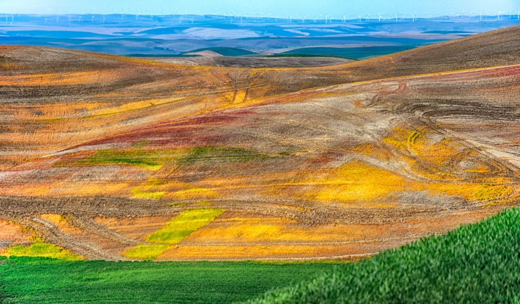 Tractor tracks add texture to newly cultivated fields in the Palouse region of western Washington, near Colfax. In the distance wind turbines catch the prevaling winds.