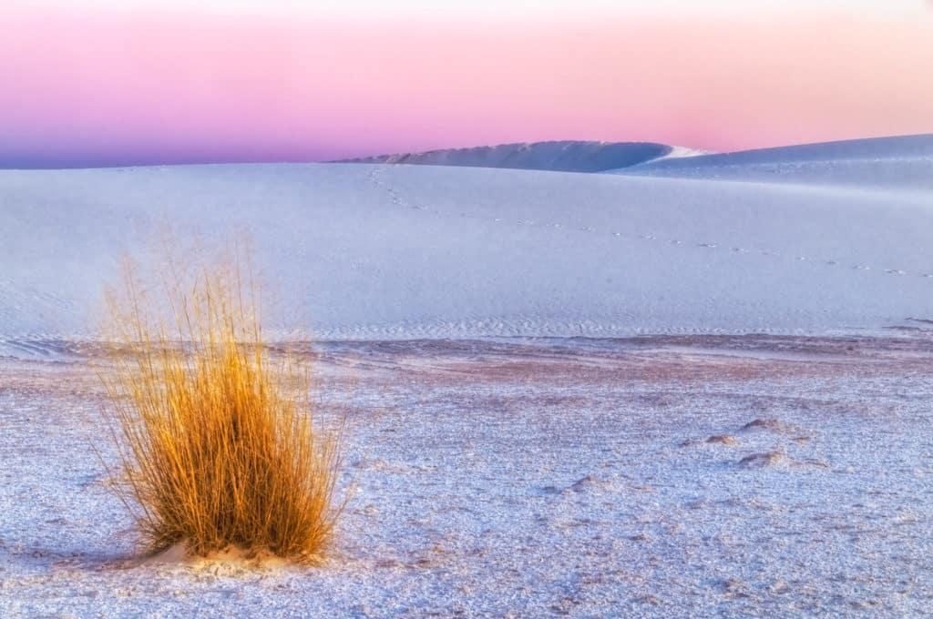 Alpenglow tinges the horizon at White Sands National Monument near Alamogordo, New Mexico.