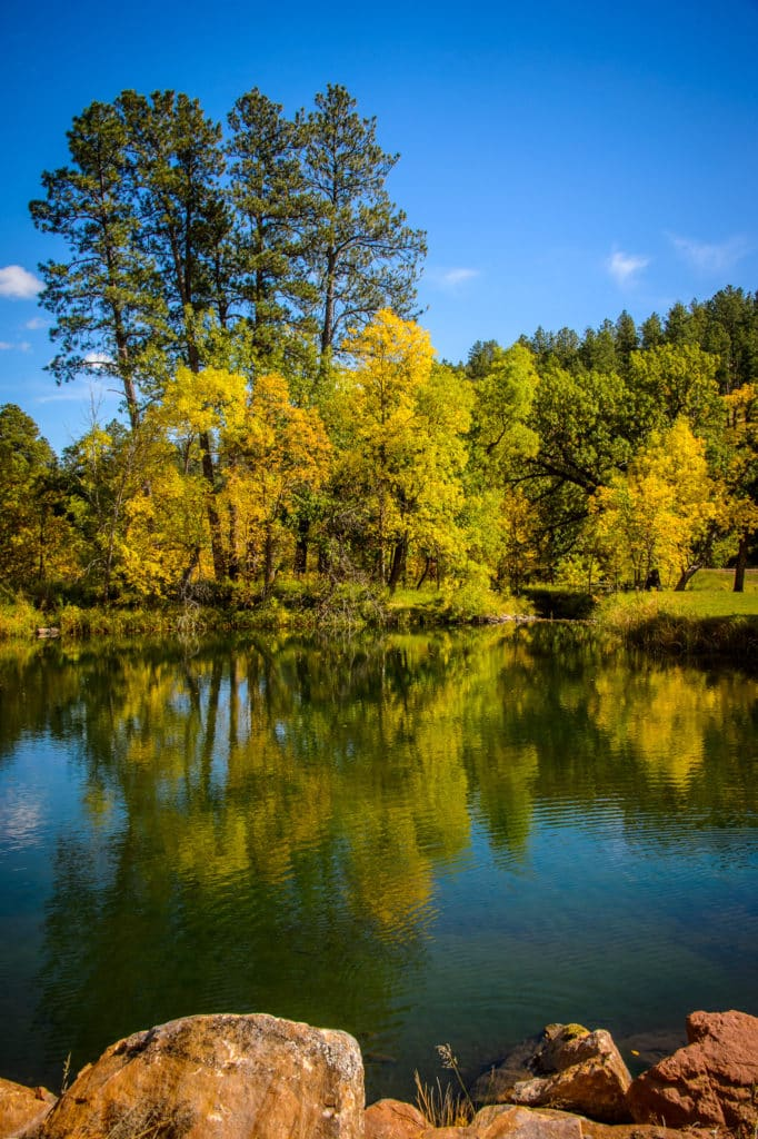 Fall leaves on the trees refelct in a lake in the Black Hills of South Dakota near Custer.