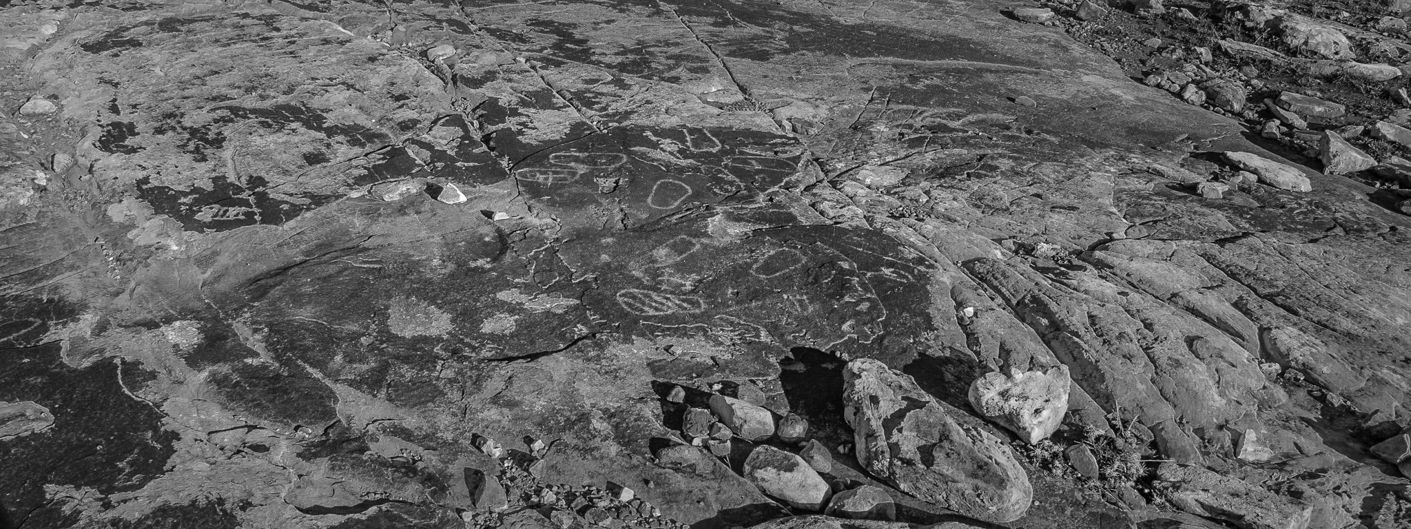 Rare horizontal petroglyph carved into desert varnish near the Harpers Corner Road in Dinosaur National Monument.