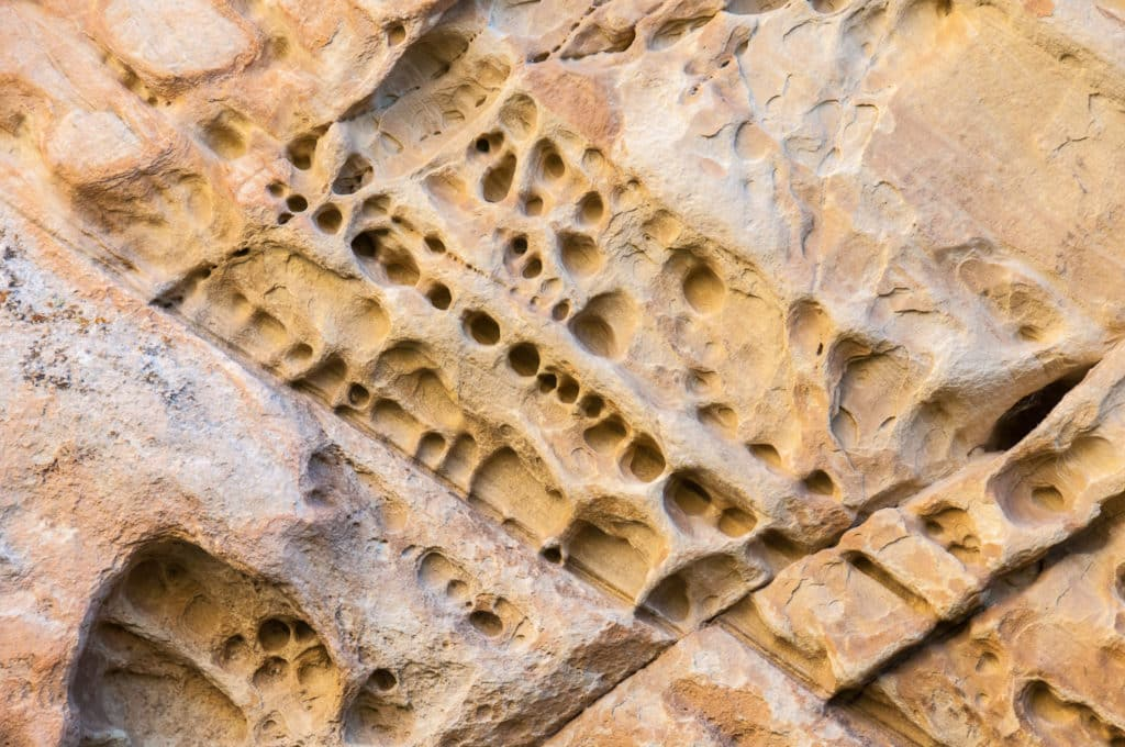 Holes in sandstone cliffs, also called tafoni, is in box canyon north of the Josie Morris Ranch In Dinosaur National Monument.