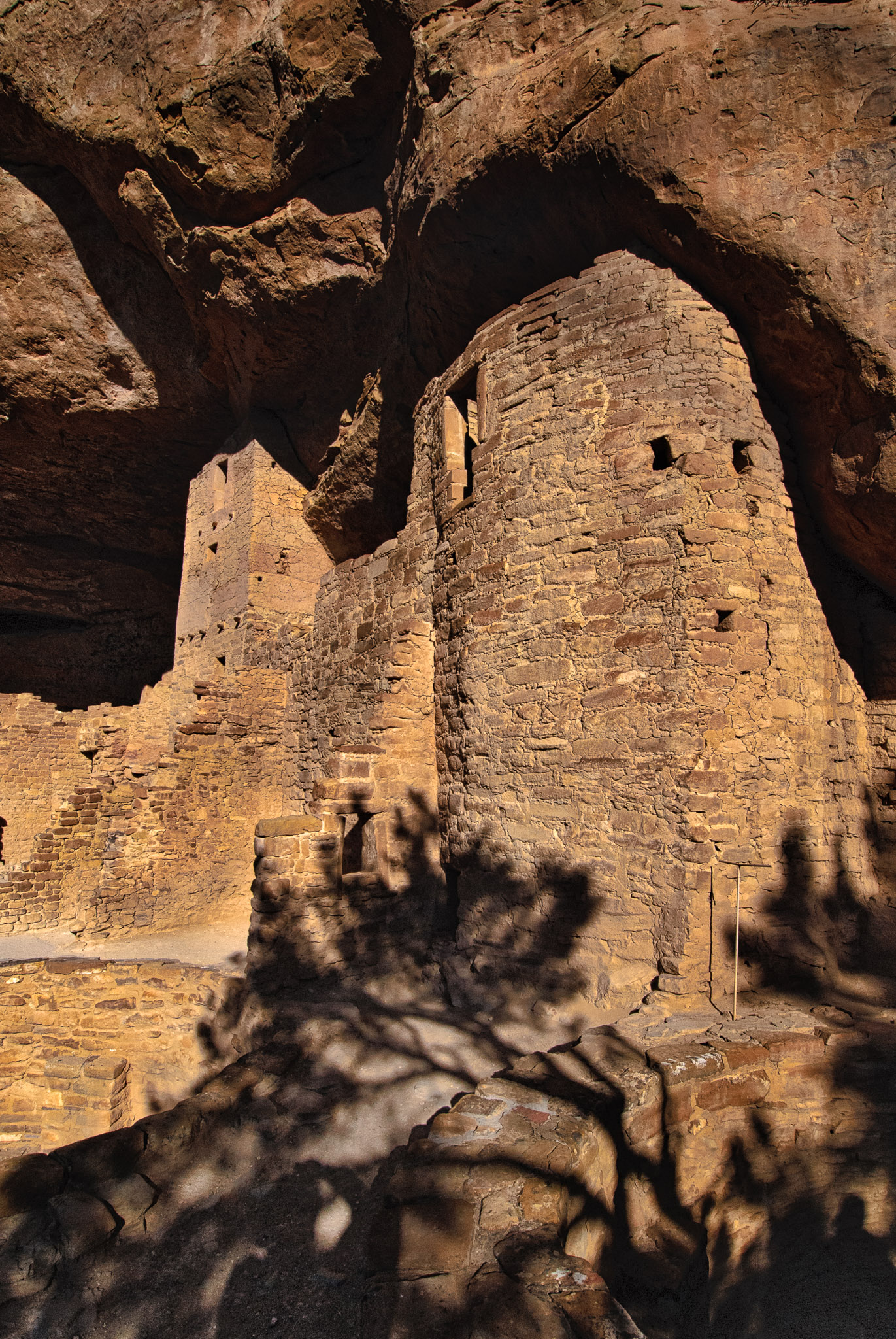Square and round towers of Cliff Palace in Mesa Verde National Park near Durango and Cortez, Colorado.