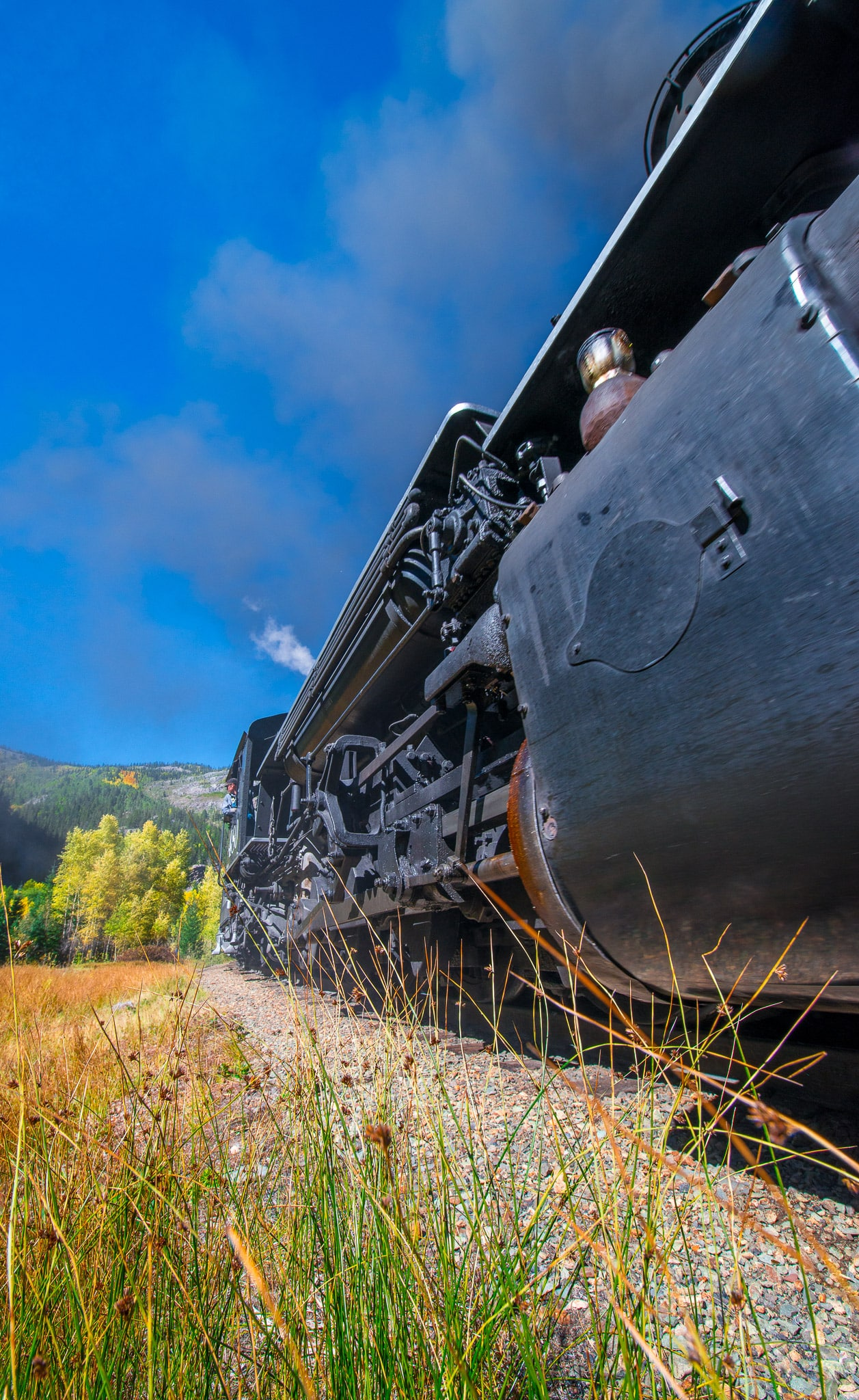 Durango & Silverton Railroad's Engine 480 whizzes by on it's trip from Silverton to Durango, Colorado.
