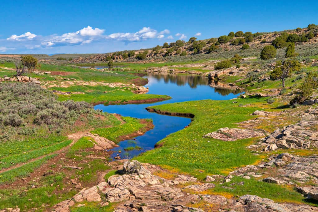 The blue morning skies reflect in a small pond along Harper's Corner Road, leading into Dinosaur National Monument, Colorado.