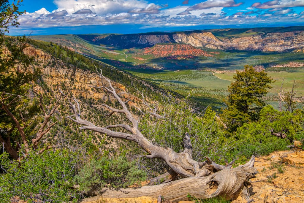 A view of Vivas Cake Hill from Canyon Overlook, along Harpers Corner Road in Dinosaur National Monument, Colorado.