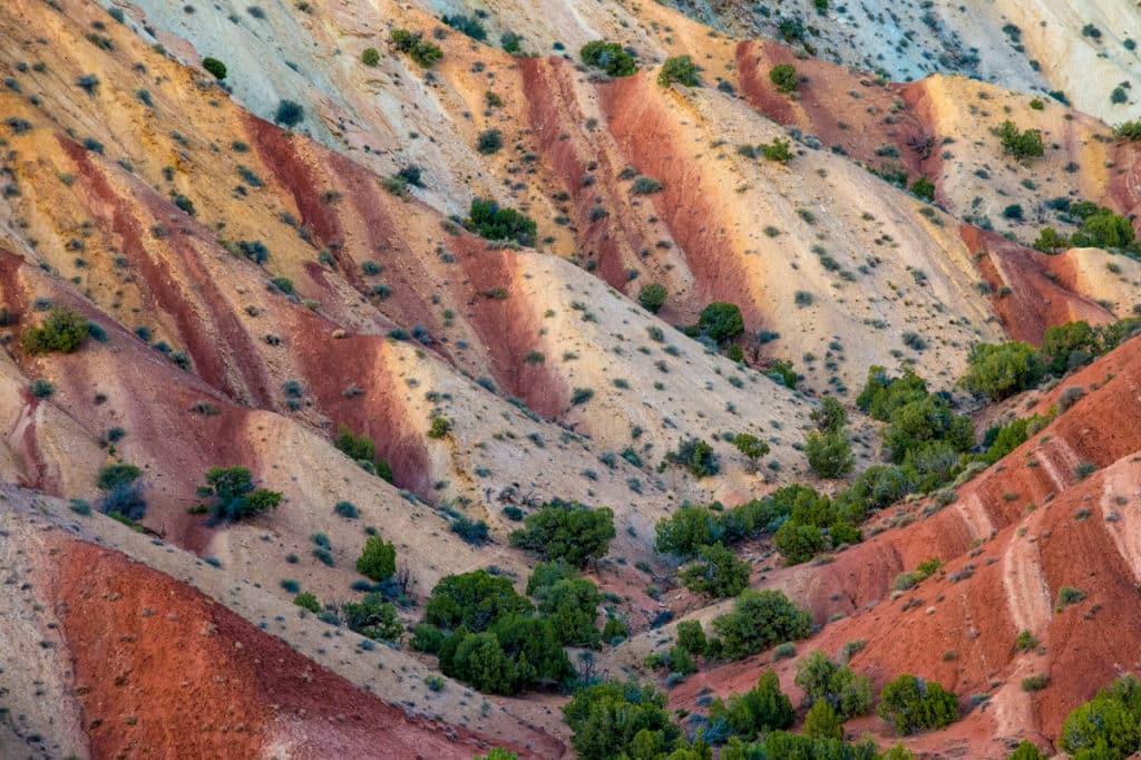 This closeup of the Chinle Formation was taken on the road to Split Mountain Campground and boat launch. It is located in Dinosaur National Monument, Utah.